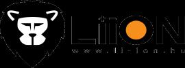 Li-ION Kft. logo3